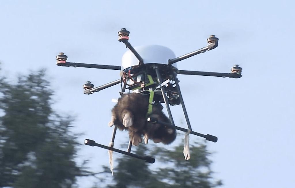 drones_monkey